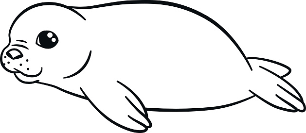 Coloring Pages Little Cute Baby Fur Seal Smiles Stock