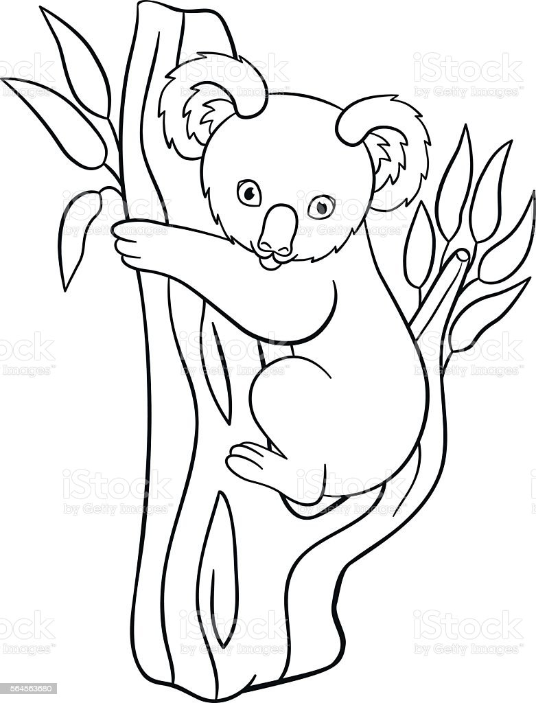 Baby Koala Bear Coloring Pages Coloring Pages