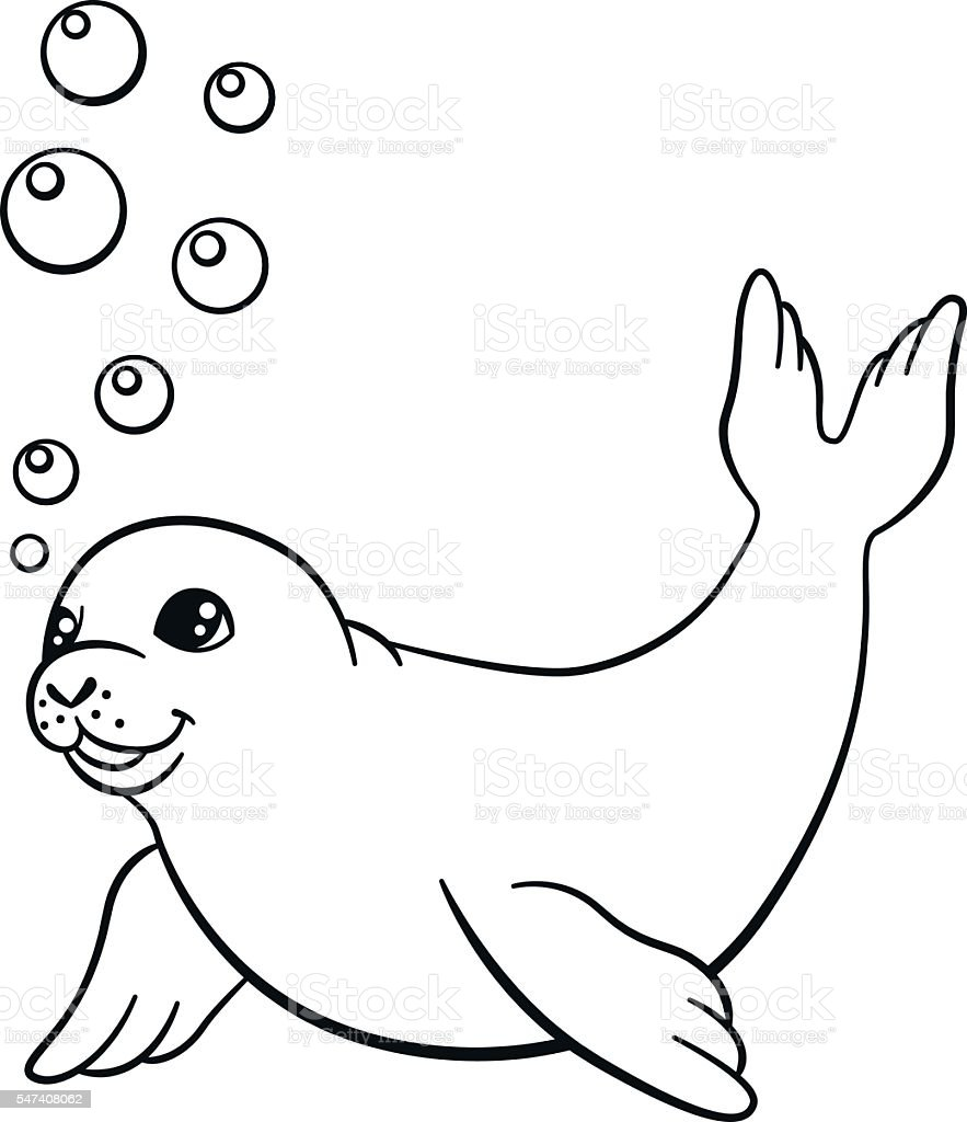 Coloring Pages Little Cute Baby Seal Swims stock vector art