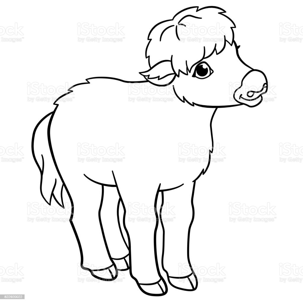 coloring pages little cute baby yak stock vector art 822920022