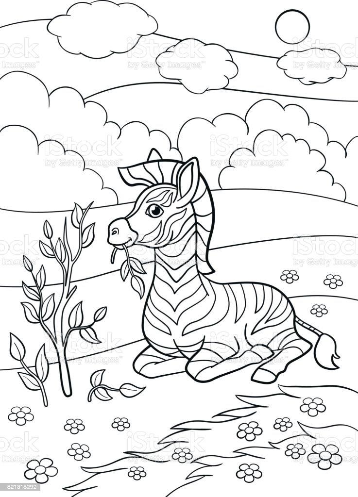Coloriage Bebe Zebre.Pages A Colorier Petit Zebre Bebe Mignon Se Trouve Et Mange