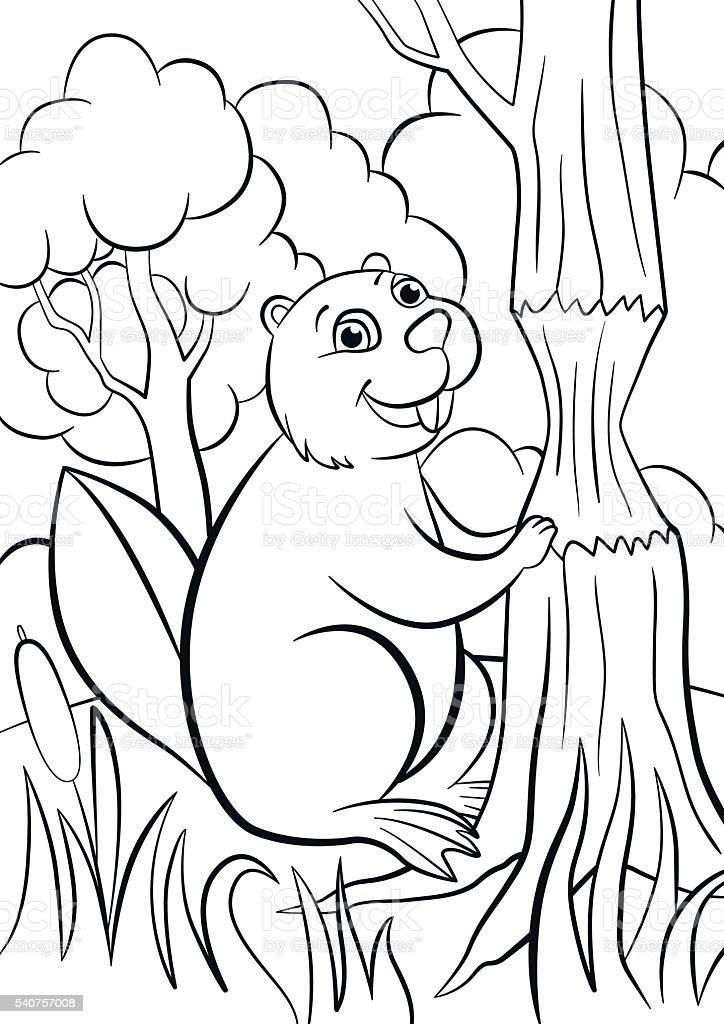 Ilustración de Colorear Páginas Poco Lindo Castor Sonrisas y más ...