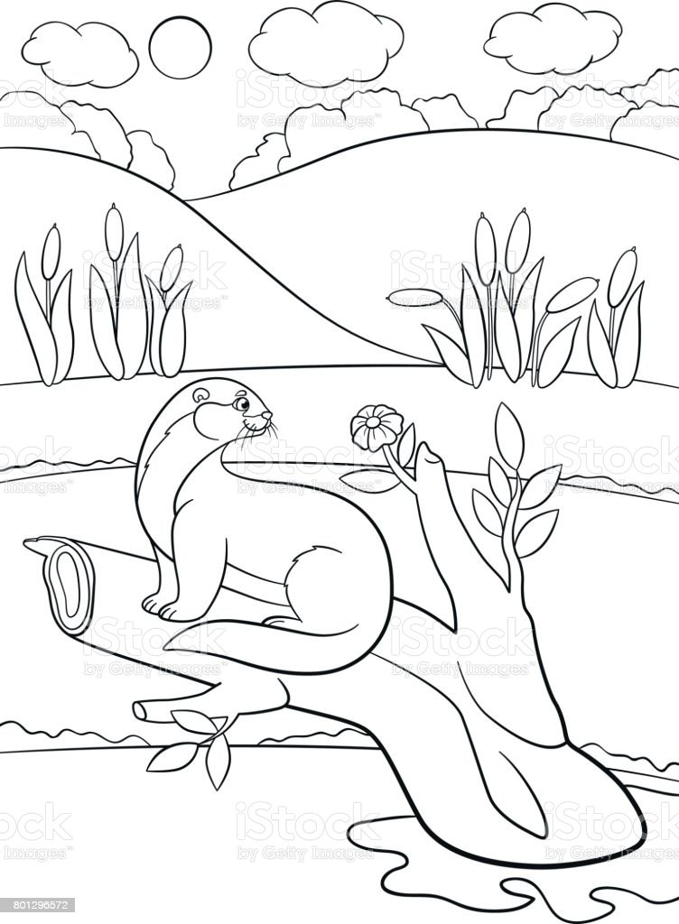 Ilustración de Dibujos Para Colorear Poco Lindo Nutria Se Encuentra ...