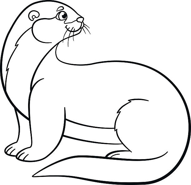 Coloring Pages Little Cute Otter Smiles Stock Vector Art More Images Of Amphibian 603911374