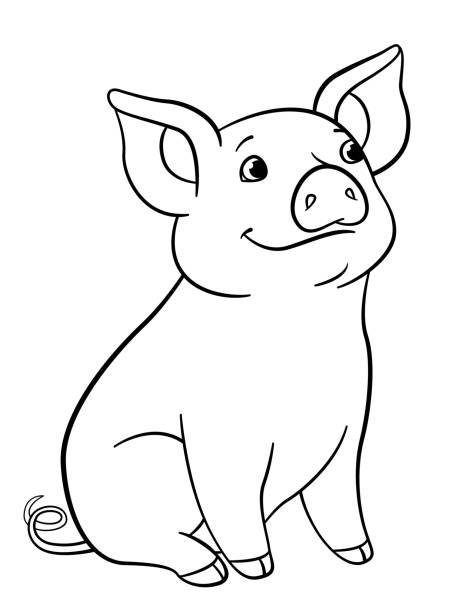 686 Cute Pig Coloring Pages Illustrations Clip Art Istock