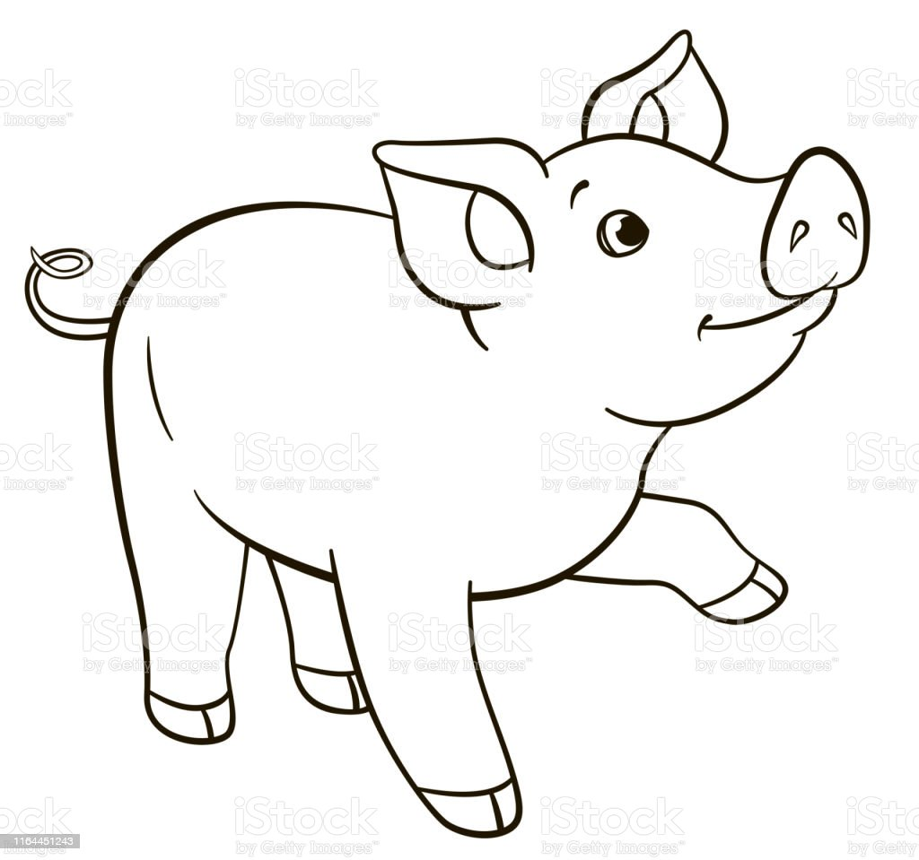 Boyama Sayfalari Kucuk Sevimli Piglet Duruyor Ve Gulumsuyor Stok