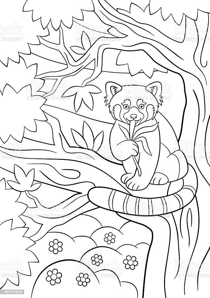 Coloring pages. Little cute red panda eats leaves. royalty-free coloring pages little cute red panda eats leaves stock vector art & more images of activity
