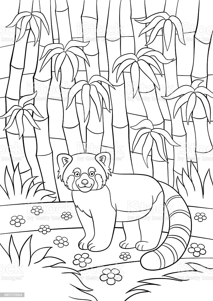 Coloring pages. Little cute red panda in the forest. royalty-free coloring pages little cute red panda in the forest stock vector art & more images of activity