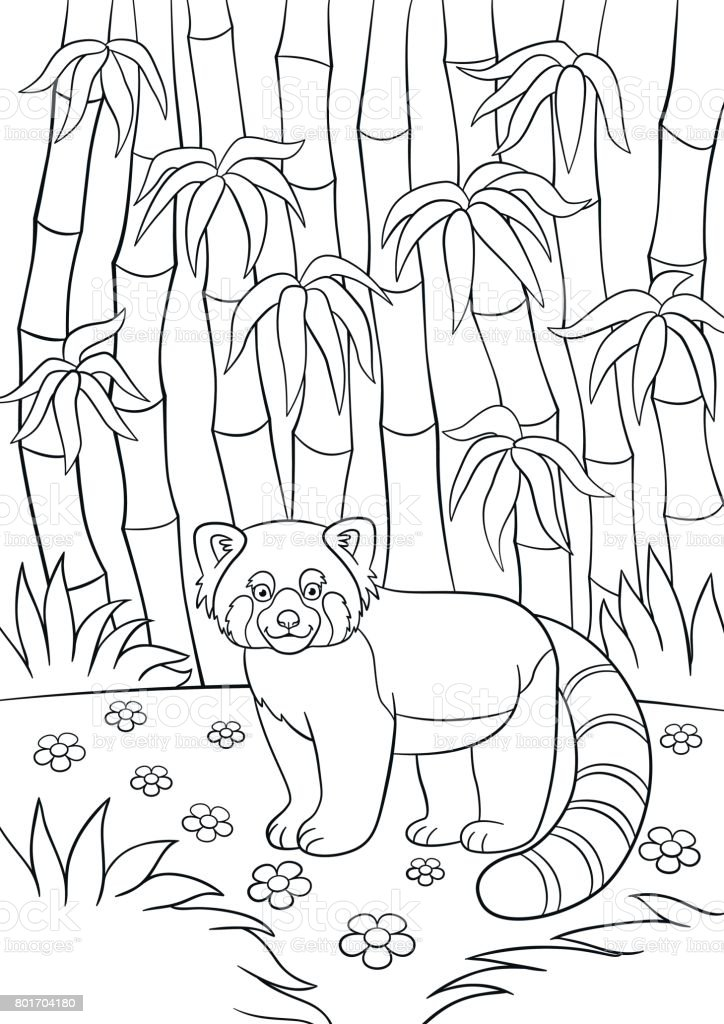 Ilustración de Dibujos Para Colorear Poco Panda Lindo De Rojo En El ...