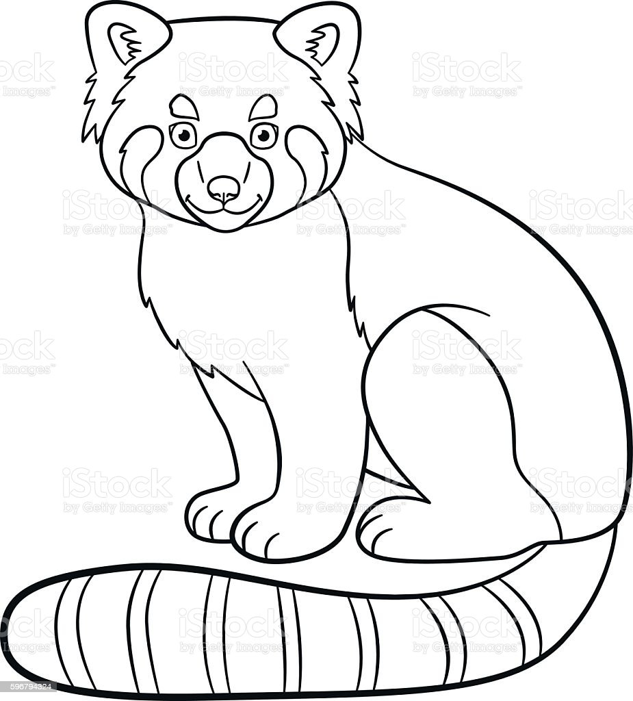 Red Panda Coloring Page Coloring Pages Little Cute Red Panda Smiles Stock Vector Art