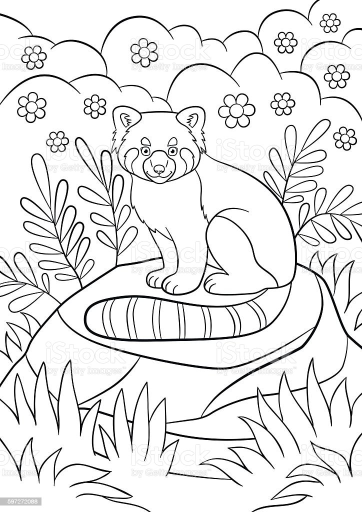 Coloring pages. Little cute red panda smiles. royalty-free coloring pages little cute red panda smiles stock vector art & more images of activity