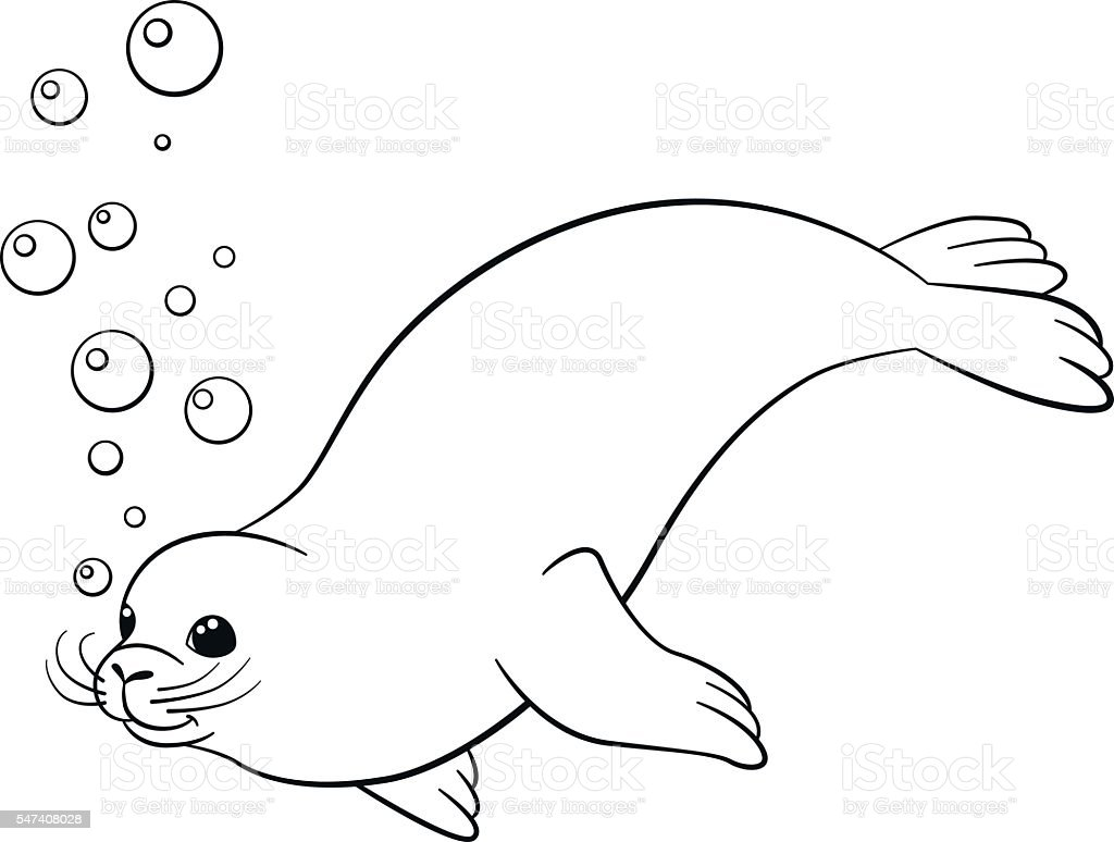 Coloring Pages Little Cute Seal Swims Stock Vector Art & More Images ...