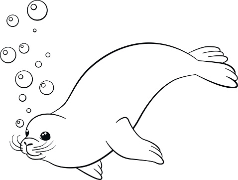 Coloring Pages Little Cute Seal Swims Stock Vector Art