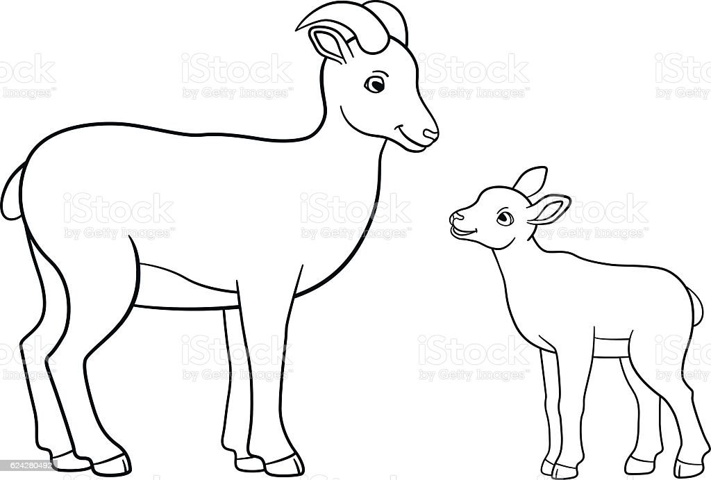Bighorn Sheep Ram Coloring Book Page | Free Coloring Book Pages ... | 691x1024