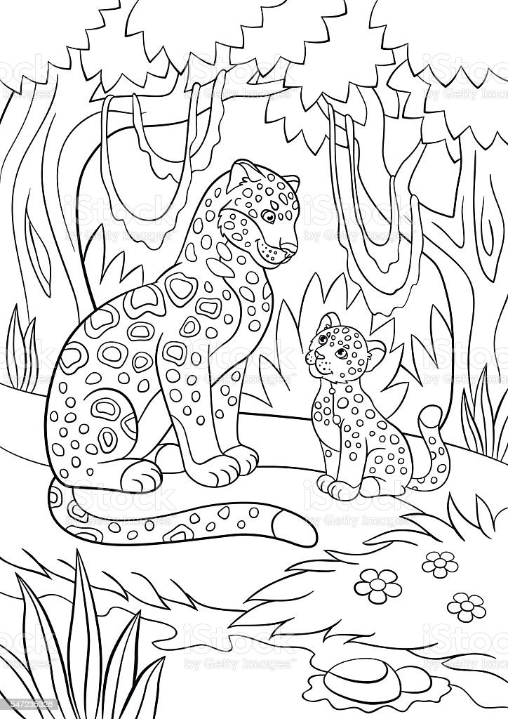 Coloring Pages Mother Jaguar With Her Cub Stock Vector Art More
