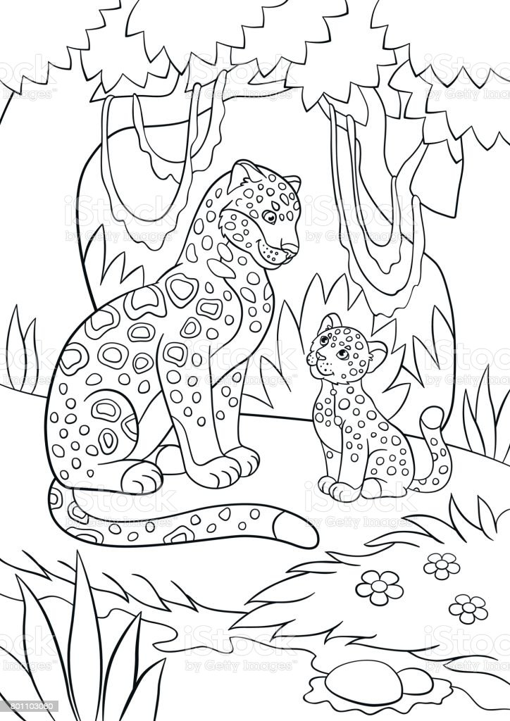 Ilustración De Dibujos Para Colorear Jaguar Madre Con Su Cachorro Y