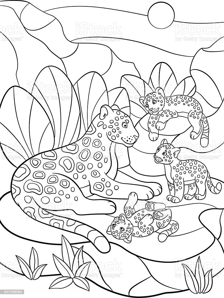 Coloring Pages Mother Jaguar With Her Little Cute Cubs Stock Vektor Art Und Mehr Bilder Von Afrika Istock
