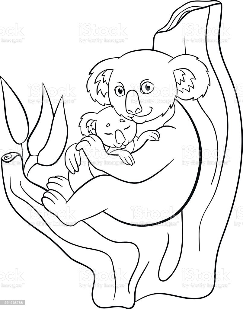 Coloring Pages Mother Koala With Her Little Cute Sleeping Baby Stock ...