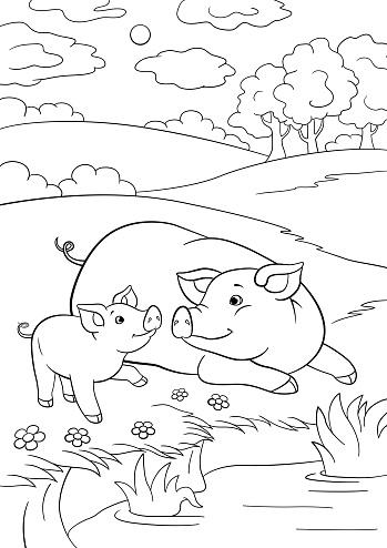 Baby pig coloring printable | Cute piglets, Cute pigs, Baby pigs | 494x349