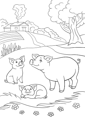 Coloring pages. Mother pig with her two little cute piglets.