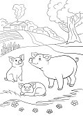 Coloring pages. Black and white. Mother pig with her two little cute piglets.