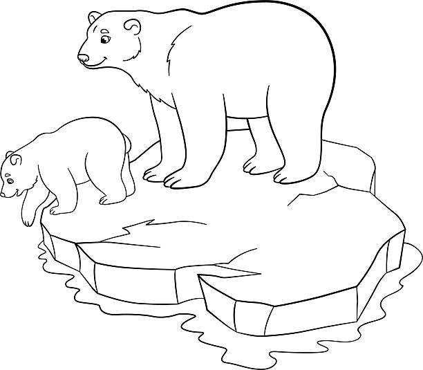 Best Mama Bear Drawing Illustrations Royalty Free Vector