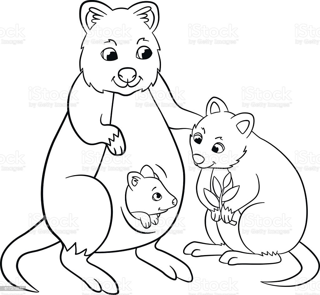 Coloring Pages. Mother Quokka With Her Little Cute Babies. Royalty Free Coloring  Pages