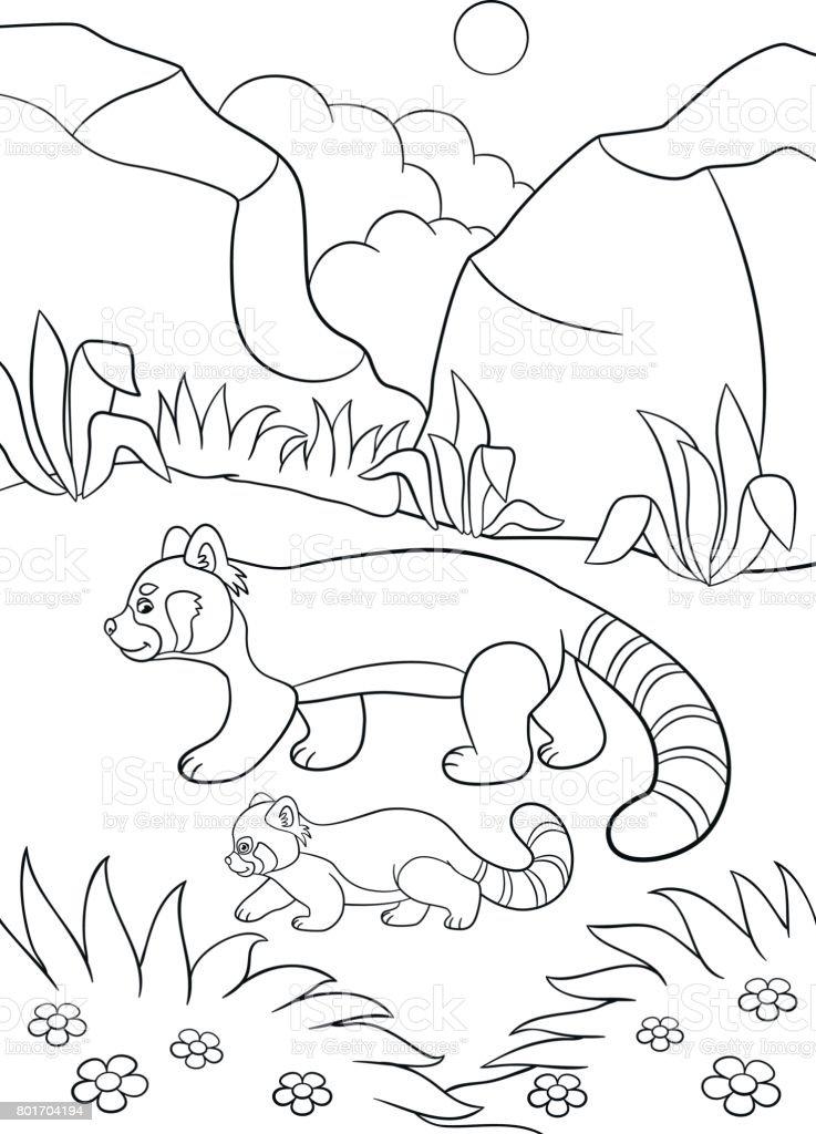 Ilustración de Dibujos Para Colorear Panda Rojo Madre Camina Con Su ...