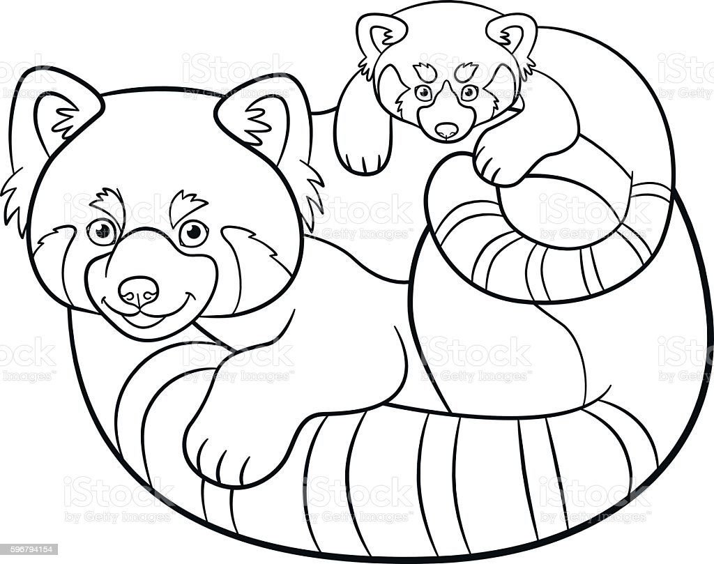 coloring pages mother red panda with her baby royalty free stock vector art - Panda Coloring Page