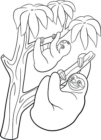 Coloring Pages Mother Sloth With Her Little Cute Baby ...