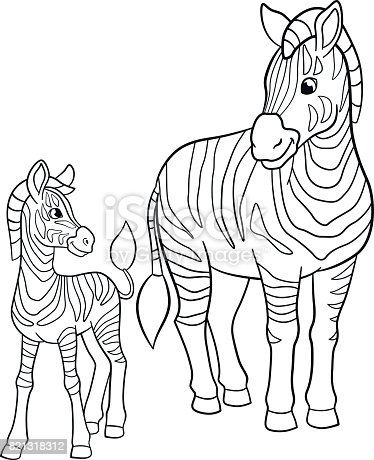 Coloring Pages Mother Zebra With Her Little Cute Baby Stock Vector Art More Images Of Africa 821318312