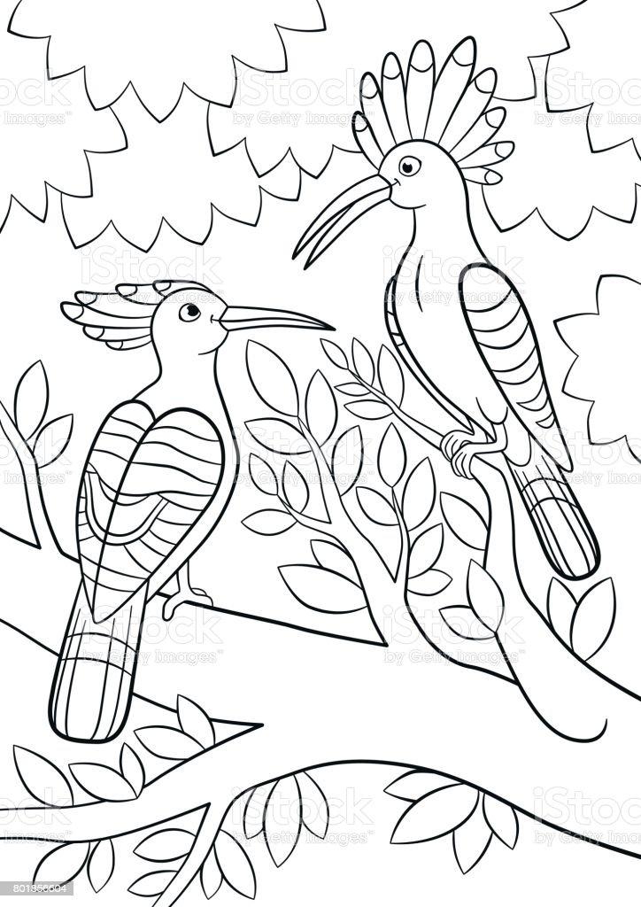 Boyama Sayfaları Iki Güzel Ibibikler Ağaç Dalı üzerinde Oturmak Stok