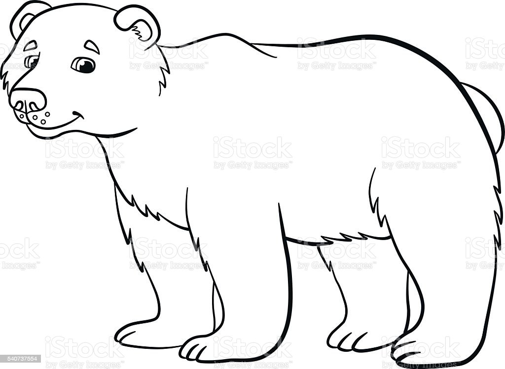Coloring Pages Wild Animals Cute Bear Smiles Royalty Free