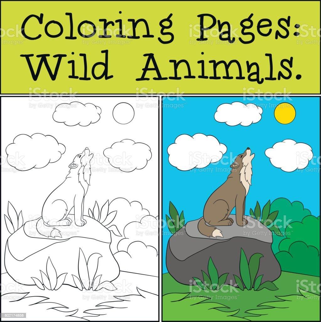 Ilustración de Dibujos Para Colorear Animales Salvajes Lindo Hermoso ...