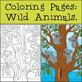 Coloring Pages: Wild Animals. Four little cute koala bebies smil