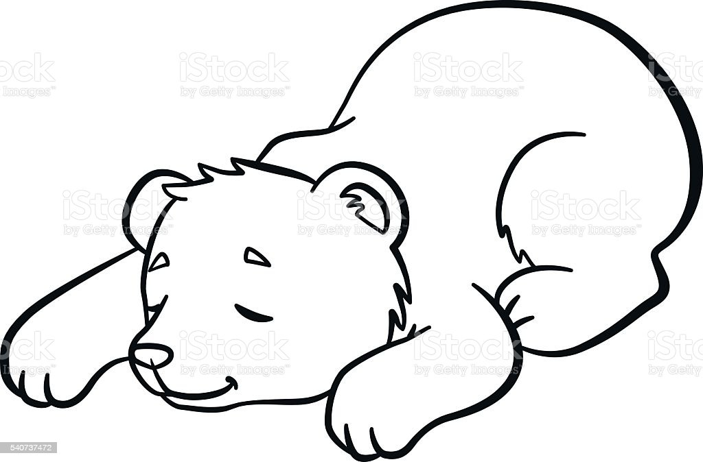 Coloring Pages Wild Animals Little Cute Baby Bear Sleeps Royalty Free