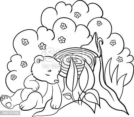 istock Colorear páginas. Los animales salvajes. Tipo sonriente bear ...