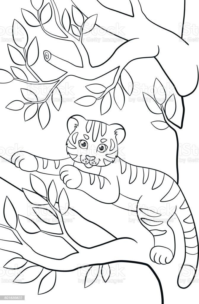 Malvorlagen Wilde Tiere Kleine Niedliche Baby Tiger Legt Und Lächelt ...