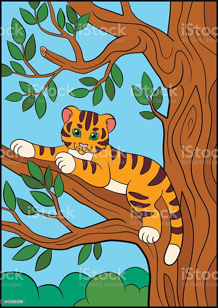 Coloring Pages Wild Animals Little Cute Baby Tiger Stock Vector Art