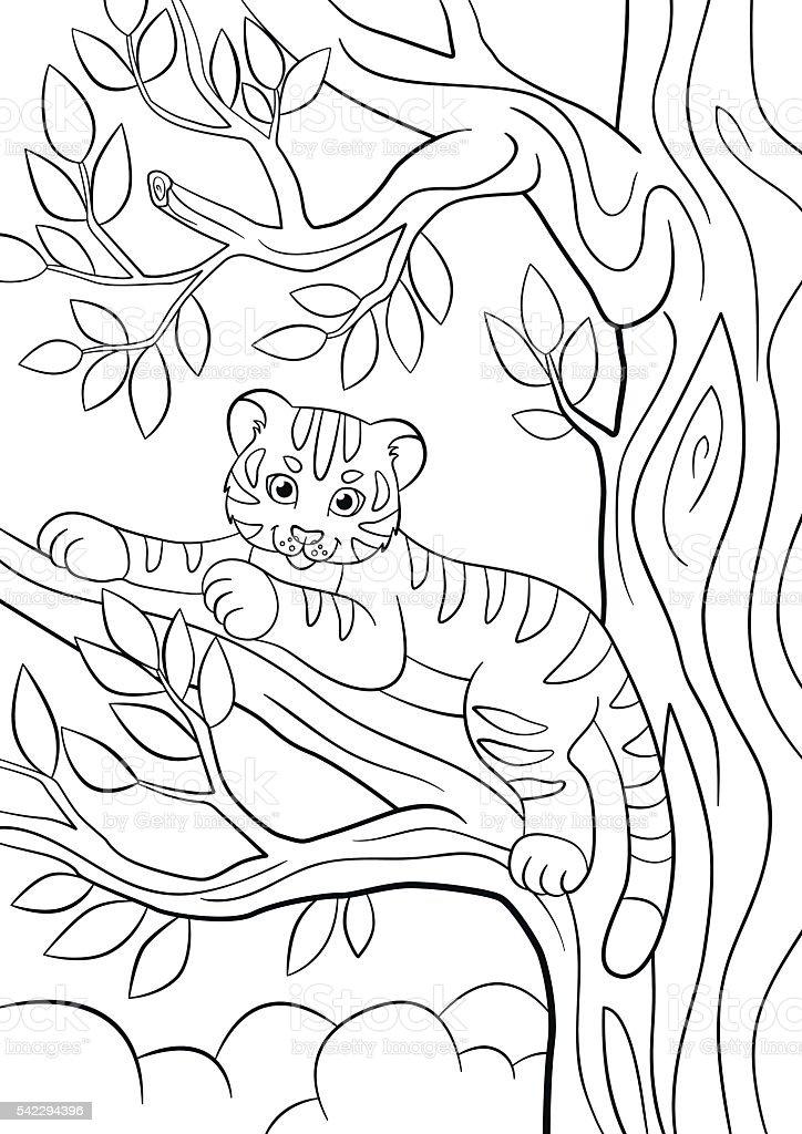 Coloriage Bebe Felin.Des Pages A Colorier Les Animaux Sauvages Mignon Petit Bebe Tigre