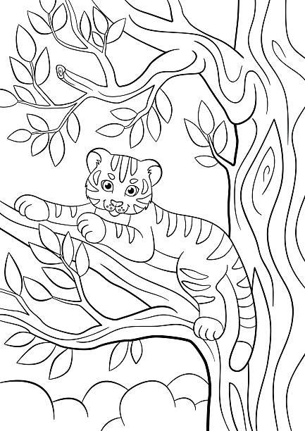 Vectores de Tigre En La Selva Para Colorear Página y Illustraciones ...