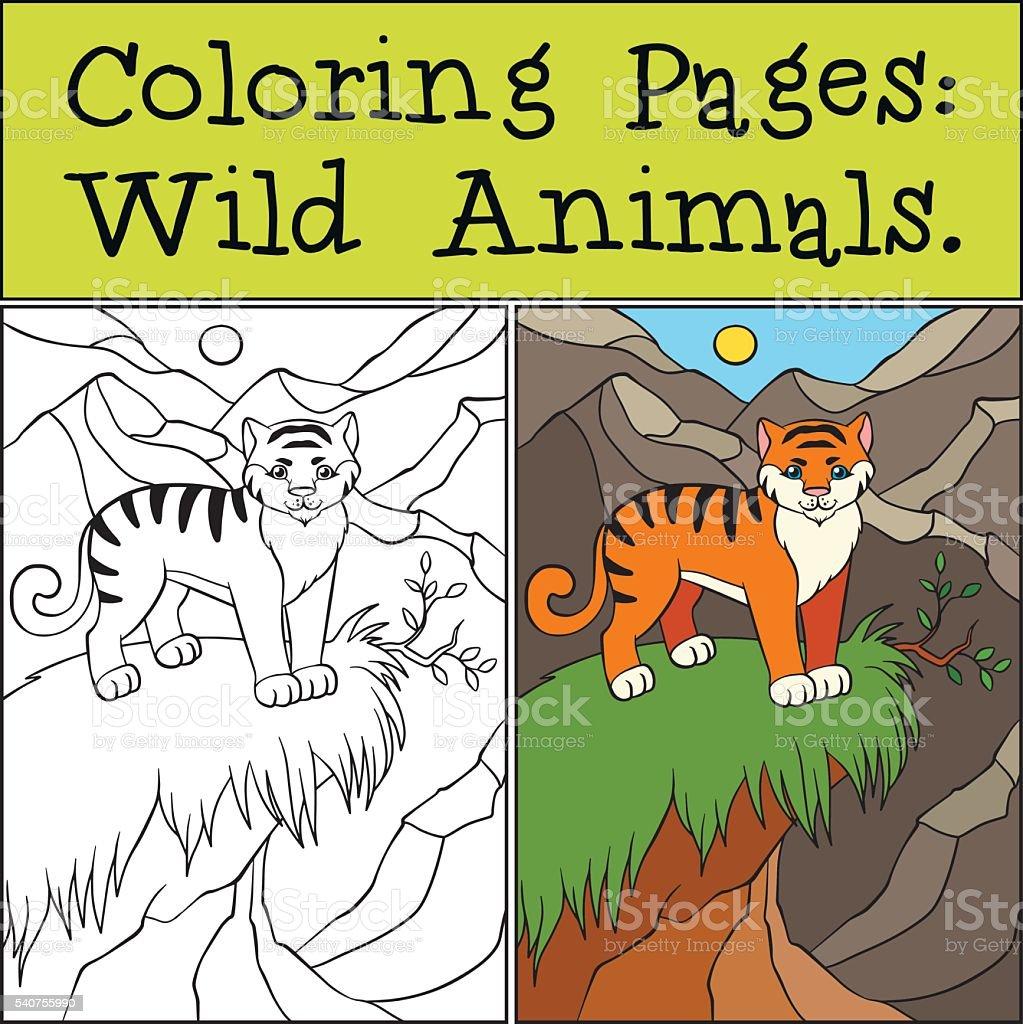 Colorear Páginas Los Animales Salvajes Poco Lindo Tigre - Arte ...