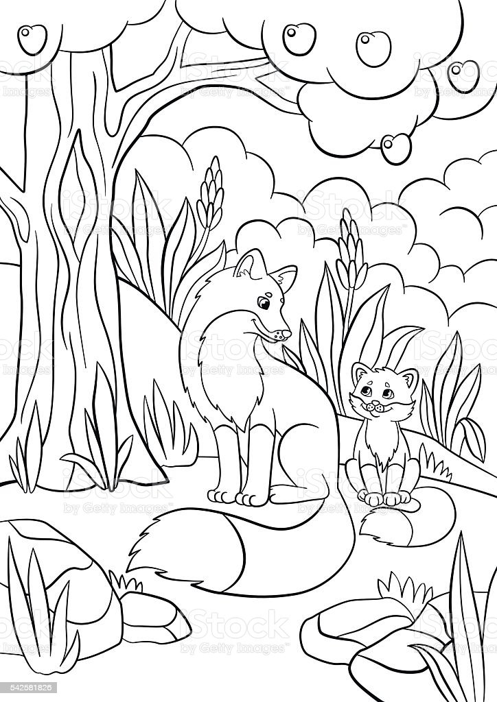Coloring Pages Wild Animals Mother Fox With Her Baby Stock Vector ...
