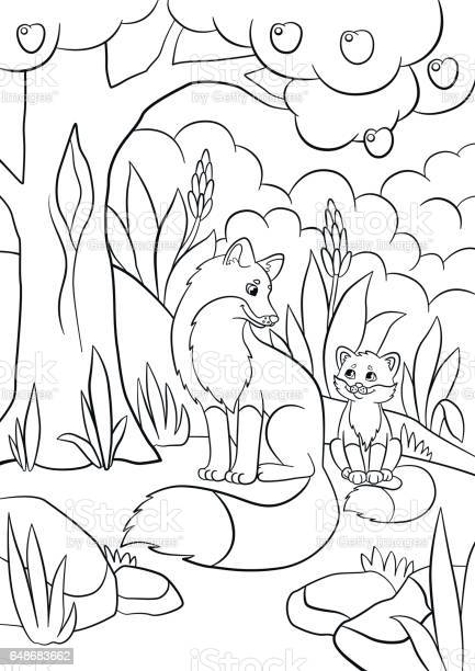 Coloring Pages Wild Animals Mother Fox With Her Little Cute Baby Fox Stock Illustration Download Image Now Istock