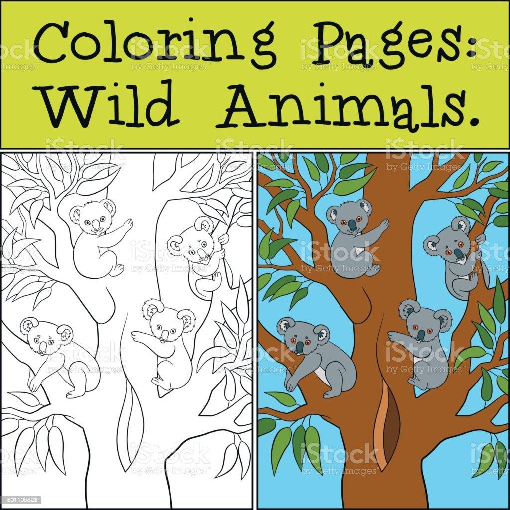 Ilustración de Dibujos Para Colorear Animales Salvajes Madre Koala ...