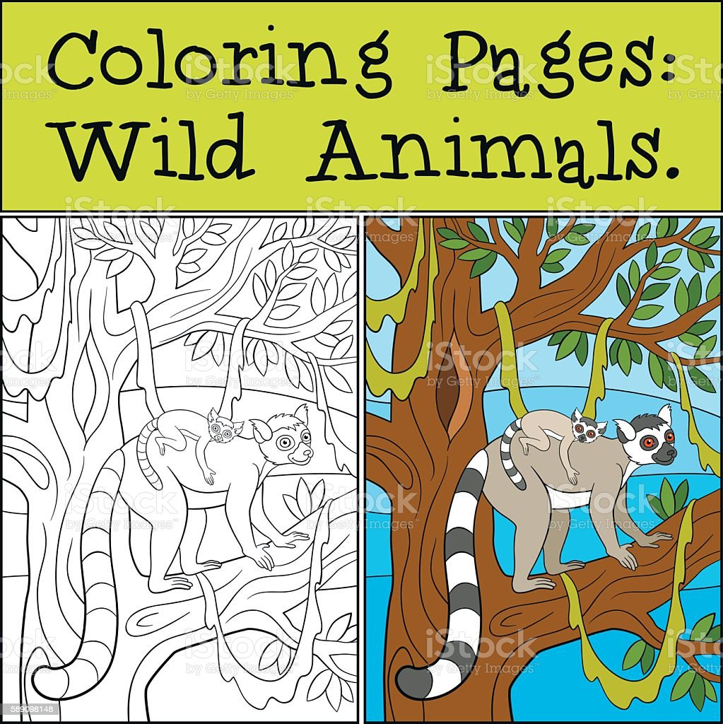 Cute Baby Lemur Coloring Page - Free Printable Coloring Pages for Kids | 1024x1023