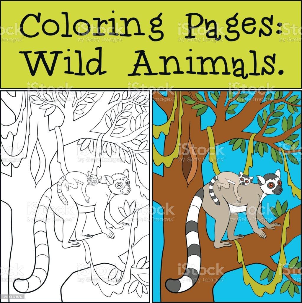 Malvorlagen Wilde Tiere Mutter Lemur Mit Ihrem Baby Stock Vektor Art ...