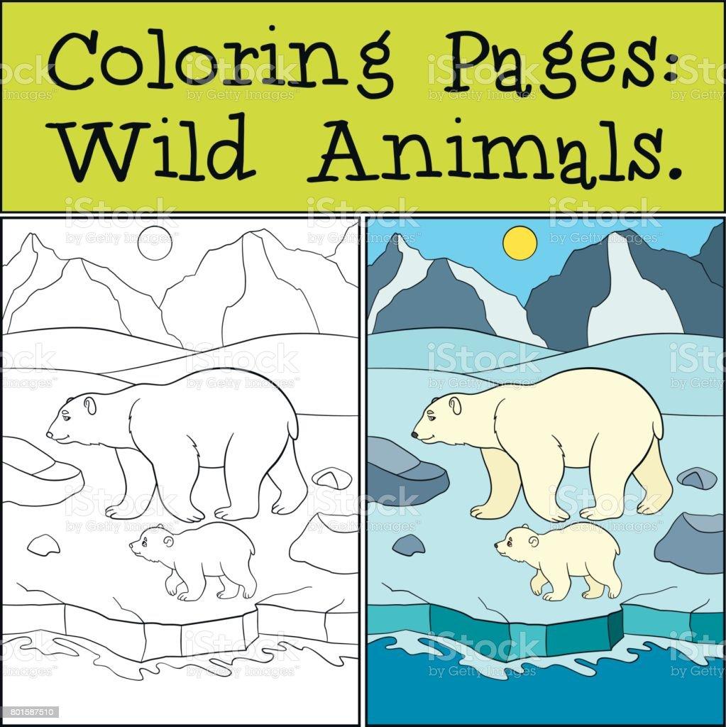 Boyama Sayfaları Vahşi Hayvanlar Onun Bebek Ile Anne Kutup Ayısı