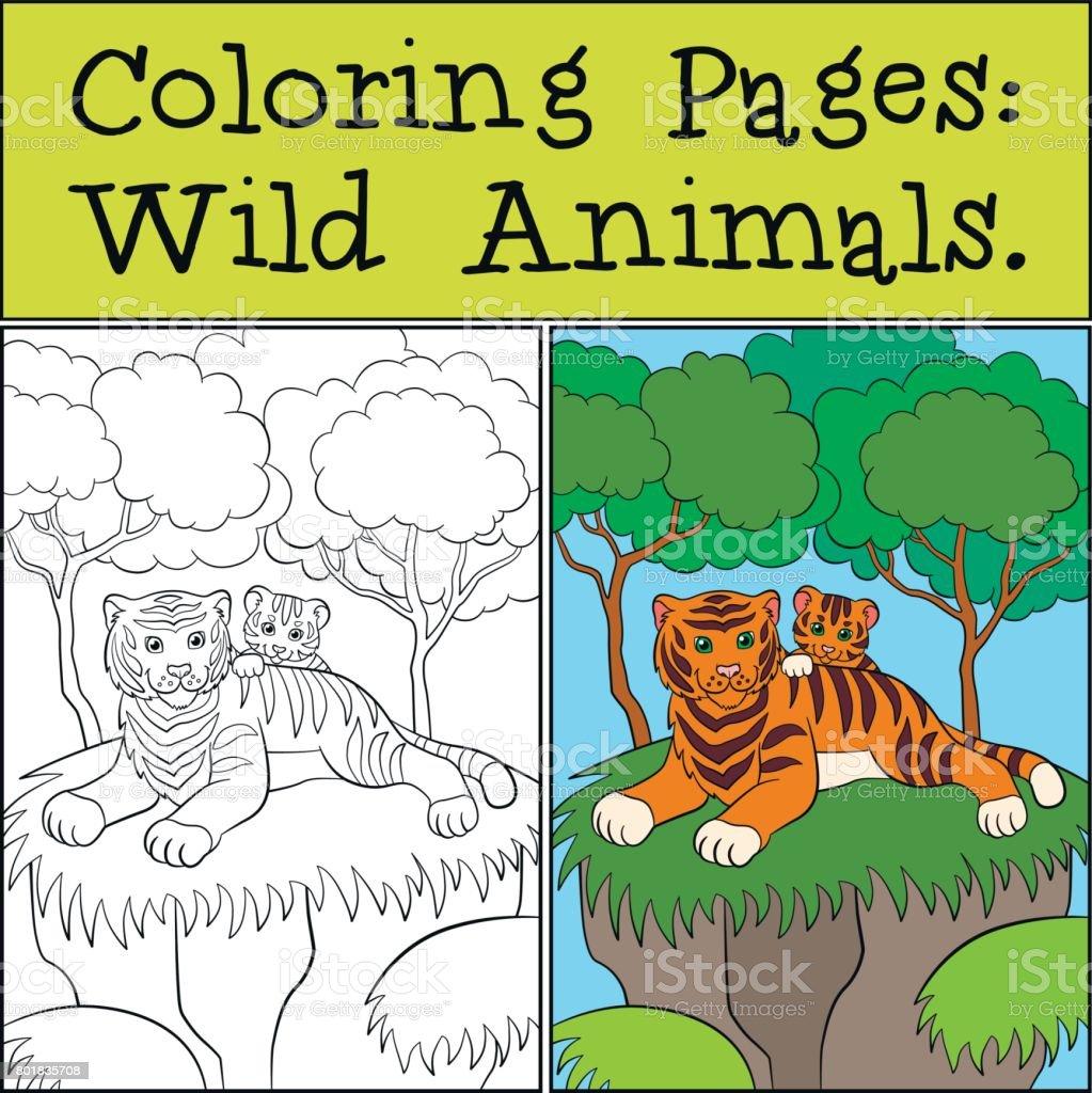 Ilustración de Dibujos Para Colorear Animales Salvajes Madre Tigre ...