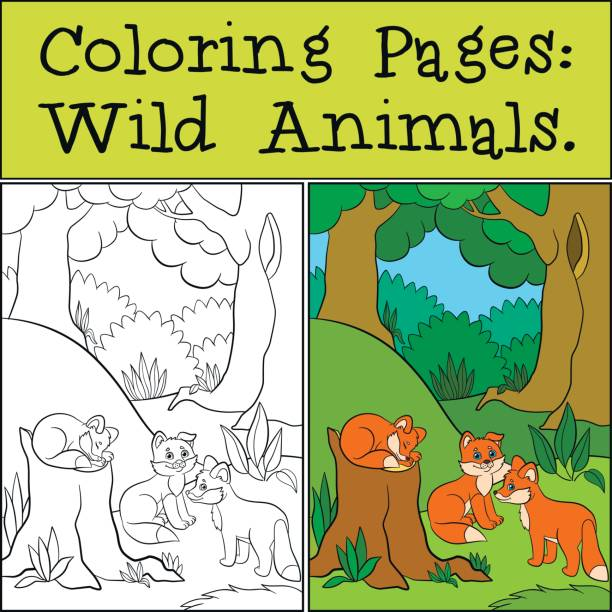 Coloring Pages Wild Animals Three Little Cute Baby Foxes In The Forest Vector
